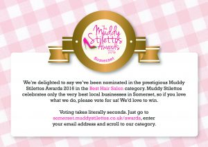 Muddy Stiletto Award forms 2016 Somerset_Best Hair Salon